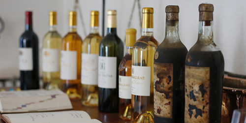 Sauternes - The Sweet Alternative