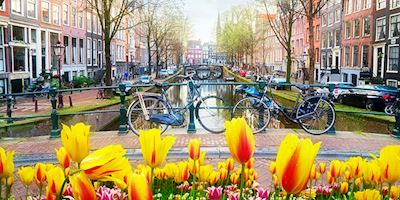 Bicycles on a bridge over a canal with tulips in the foreground