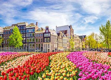 NEW Holland & Belgium in Bloom
