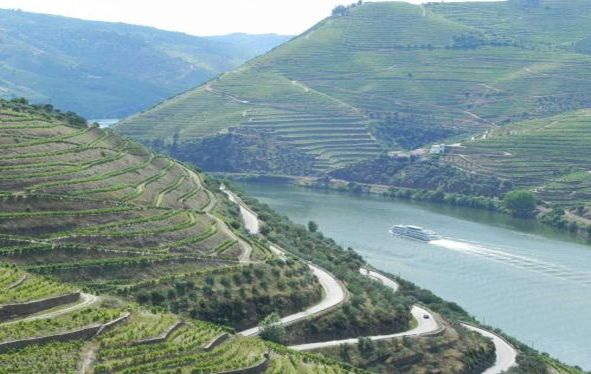 A river ship cruises past steep mountains and vineyards