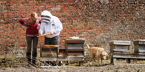 Karine Hagen with Mike the Beekeeper at Highclere Castle